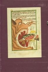 Jenský kodex