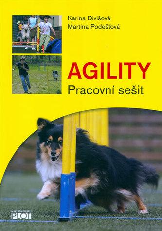 Agility - Pracovní sešit