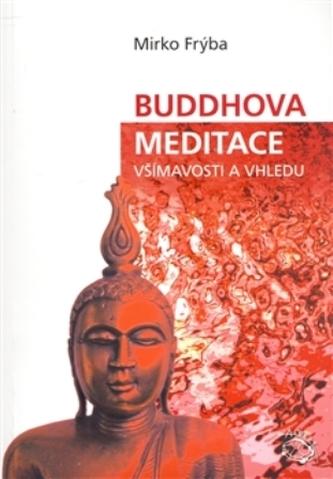 Buddhova meditace všímavosti a vhledu
