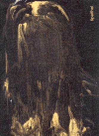 Špaňhel Jakub