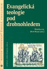 Evangelická teologie pod droblonohledem