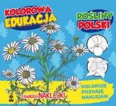 Kolorowa edukacja. Rośliny Polski