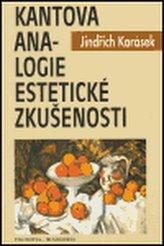 Kantova analogie estetické zkušenosti