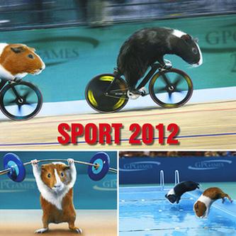 Sport - nástěnný kalendář 2012