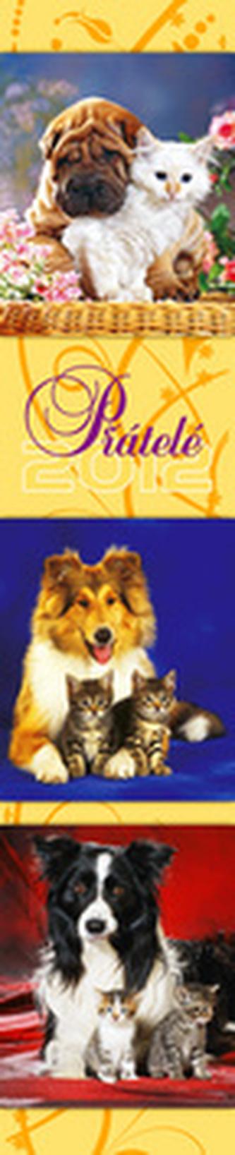 Přátelé - nástěnný kalendář 2012