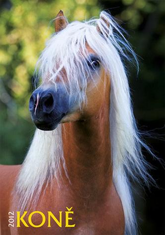 Koně - nástěnný kalendář 2012