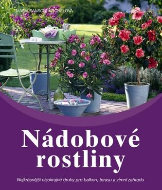Nádobové rostliny - Nejkrásnější cizokrajné druhy pro balkon, terasu a zimní zahradu
