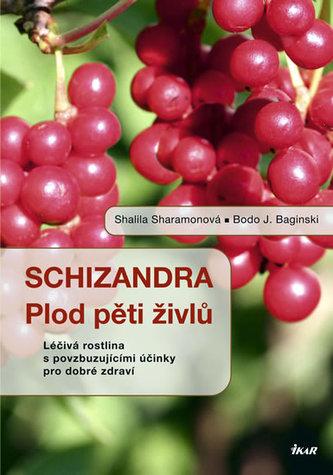 Schizandra - Plod pěti živlů. Léčivá rostlina s povzbuzujícími účinky pro dobré zdraví