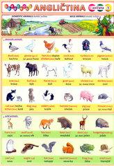 Obrázková angličtina 1 -  Zvířata