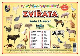 Domácí a hospodářská zvířata - Sada 24 karet - Jiří Kupka