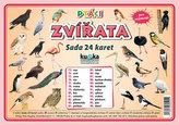 Ptáci zvířata - Sada 24 karet