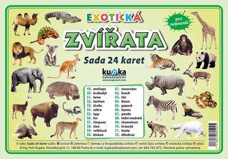 Exotická zvířata - Sada 24 karet