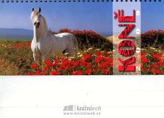 Kalendář Koně 2009