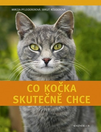 Co kočka skutečně chce