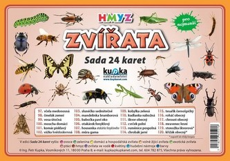 Zvířata hmyz - Sada 24 karet