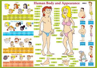 """Karta Human Body and Appearance"""" - Lidské tělo"""""""