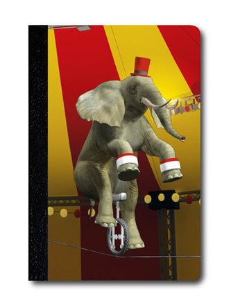 Zápisník - Úžaska - Žonglující slon