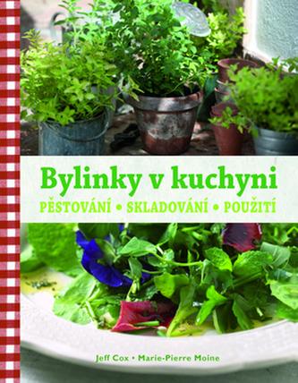Bylinky v kuchyni - Pěstování, skladování, použití