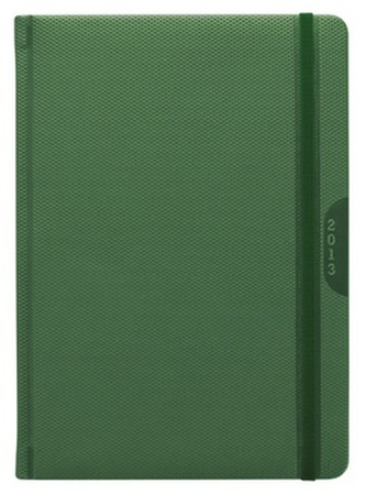 Diář 2013 denní A5 - Janus zelený