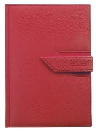 Diář 2013 denní B6 - Agama červená