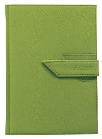 Diář 2013 denní B6 - Agama zelená