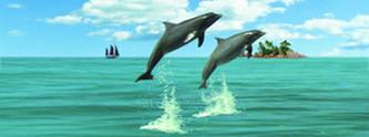 Záložka - Úžaska - Delfíni