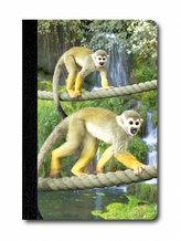Zápisník - Úžaska - Opice