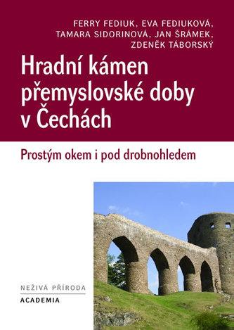 Hradní kámen přemyslovské doby v Čechách
