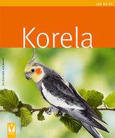 Korela - Jak na to