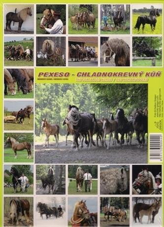 Pexeso sada koně