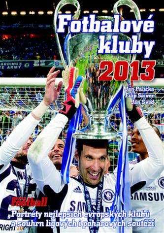 Fotbalové kluby 2013