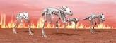 Záložka – Úžaska - Kostra T-Rex