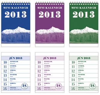 Minikalendár 2013