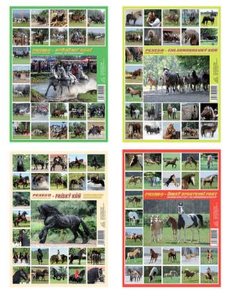 Pexeso Fríský kůň, Chladnokrevný kůň, Český sportovní pony, Spřežení koní