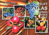 Velký atlas odrůd ovoce a révy