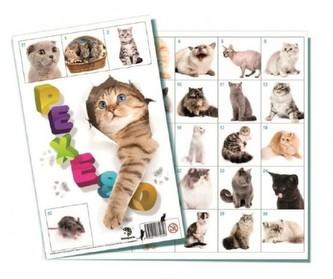 Pexeso 32 - Kočky