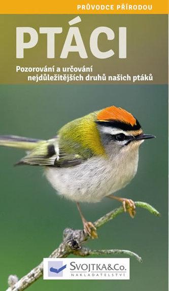 Ptáci - Pozorování a určování nejdůležitějších druhů našich ptáků