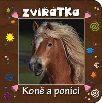 Zvířátka - Koně a poníci