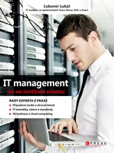 IT management