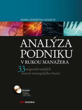 Analýza podniku v rukou manažera