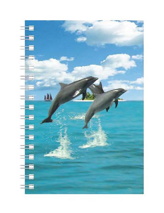 Deníček - Úžaska - Delfíni