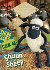 Školní sešit A5 linkovaný - 20 listů - Ovečka Shaun