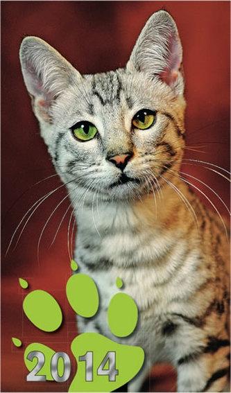 Diář 2014 - Kočky - týdenní kapesní