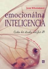 Emocionálna inteligencia