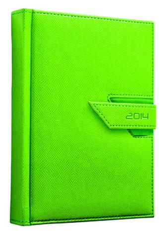 Diář 2014 Agama zelená