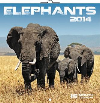 Kalendář 2014 - Sloni - nástěnný poznámkový (ANG, NĚM, FRA, ITA, ŠPA, HOL)