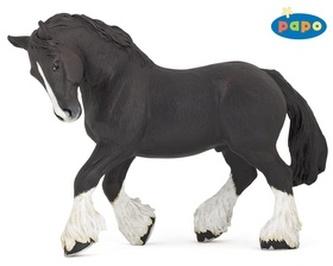 Shirský kůň černý