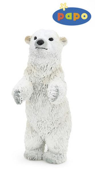 Medvěd lední mládě stojící