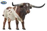 Býk Longhorn