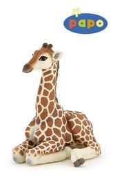 Ležící žirafa mládě